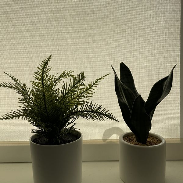 Fake Mini Plants
