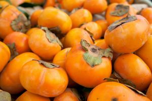 Persimmons for Sale in Brentwood, NC