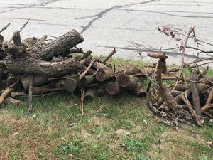 Curb Alert Free Firewood for Sale in Parma, OH