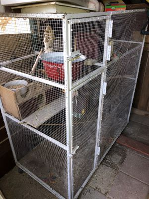 Huge bird cage with birds for Sale in Las Vegas, NV