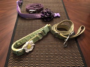 2 coordinating collars and leashes - medium for Sale in Dunedin, FL
