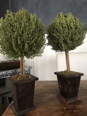 Set of 2 faux topiary plants spruce pine for Sale in West Covina, CA