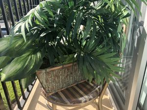 Fake plants very good quality not cheap for Sale in Fort Lauderdale, FL