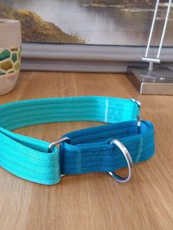 XL Martingale Dog Collar for Sale in Charlotte,  NC