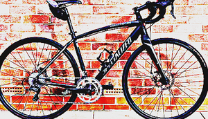 FREE bike sport for Sale in Quitman, TX