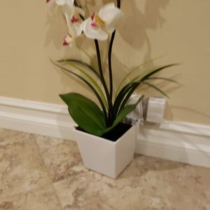 Orchid - Fake Orchid - Fake Plant Only $10 for Sale in Paramount, CA