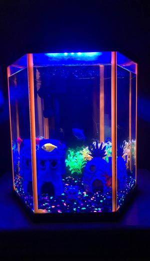 Freshwater tank for Sale in Los Angeles, CA