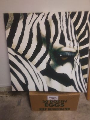 Zebra photo art for Sale in West Palm Beach, FL
