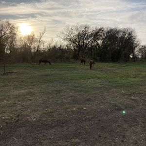 2.1 Acres Trinity River for Sale in Fort Worth, TX