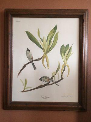 "BEST OFFER! Ray Harm framed print - ""Tufted Titmouse"" for Sale in Austin, TX"