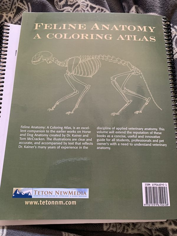 Feline Anatomy a Coloring Atlas College Textbook for Sale in ...