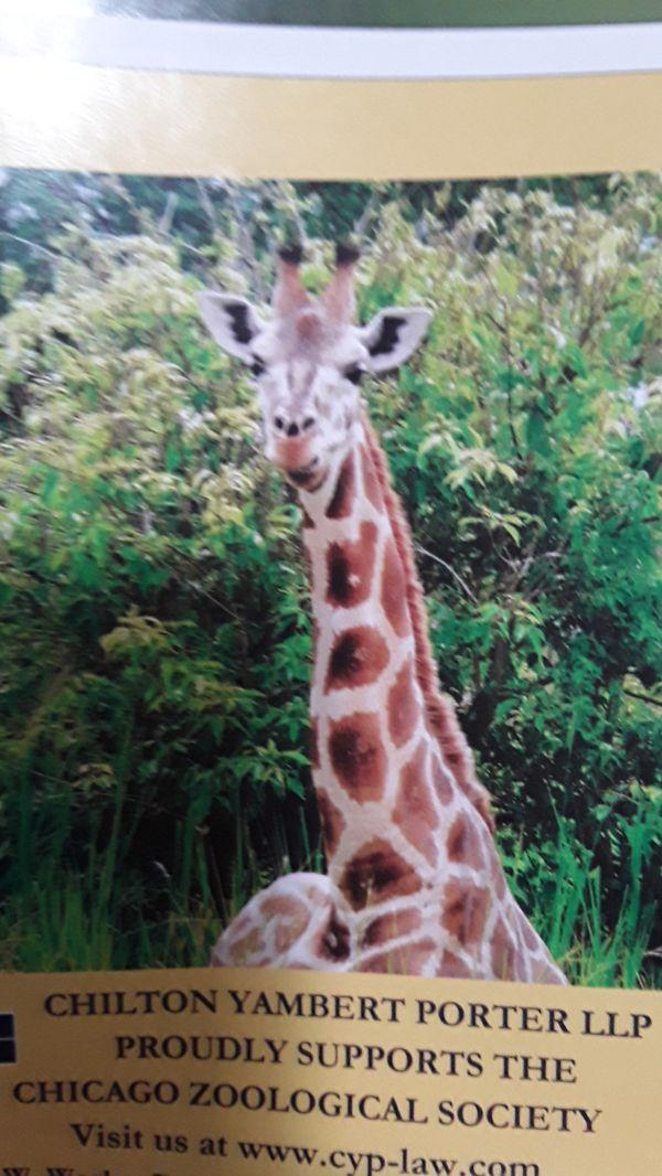 Brookfield Zoo Tickets - Expire 10/30/20