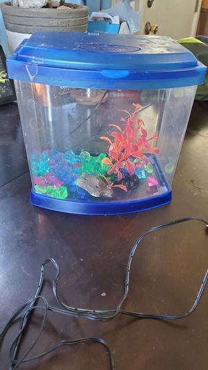 Fish tank-beda for Sale in Mechanicsburg, PA