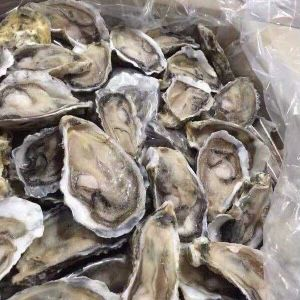 Oysters A Box 144/$70 (50/$26) for Sale in Hacienda Heights, CA