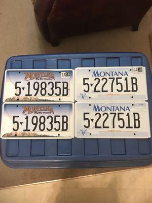 Montana License Plates for Sale in Murfreesboro, TN