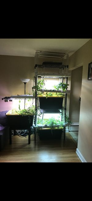 Hydroponic Equipment for Sale in Chicago, IL