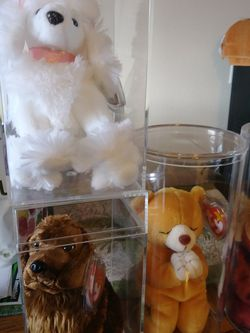 5 Beanie Babies In Display Cases for Sale in Tacoma,  WA