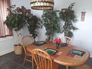 4 fake plants 3 real for Sale in Clairton, PA