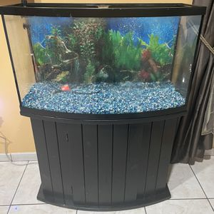 30 Gallon Fish Aquarium With Stand for Sale in Hialeah, FL