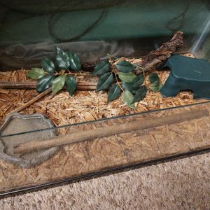 Reptile Tank for Sale in Riverside, CA