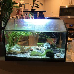 10 Gallon Fish Tank for Sale in Irvine, CA