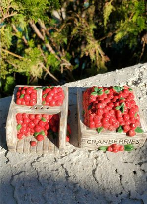 Ceramic Cranberry Box Salt & Pepper Shakers for Sale in Goodyear, AZ