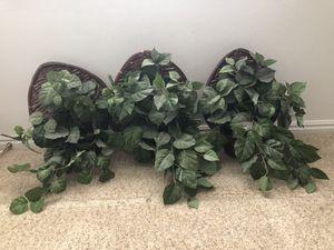 3 Silk Plants for Sale in Orem, UT