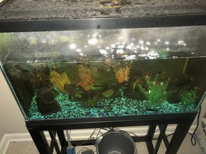 29 Gallon fish tank and accessories for Sale in CANAL WNCHSTR, OH