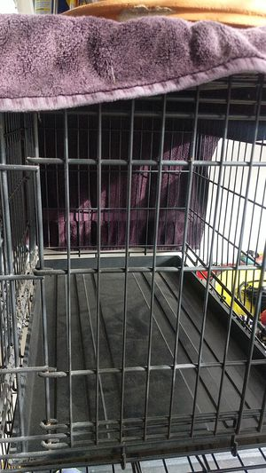 """Dog Crate - Collapsible 19""""W x 22""""H x 30""""D for Sale in Long Beach, CA"""