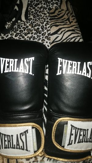 Everlast boxing gloves for Sale in Hockley, TX