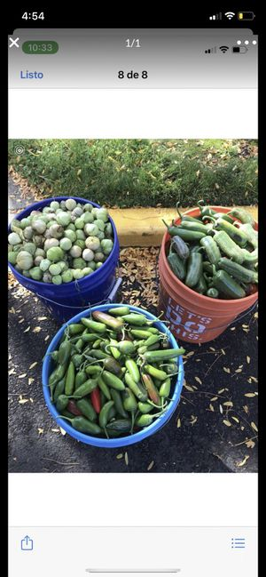 Tomatillo y chiles for Sale in Hubbard, OR