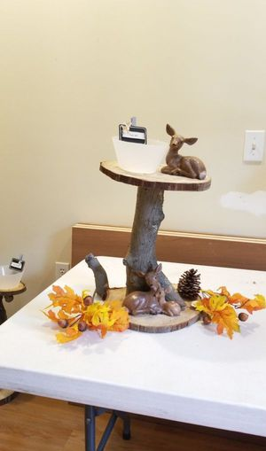 Woodland Animal Centerpieces for Sale in Silver Spring, PA