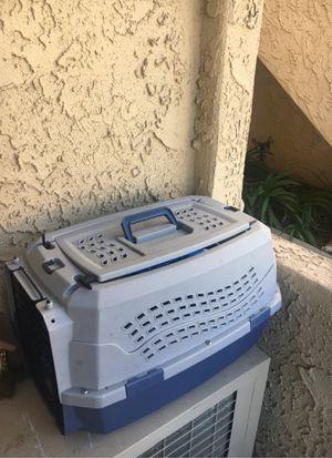 Dog for Sale in Oceanside, CA