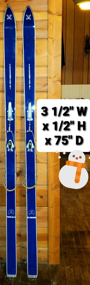 Cross Country Project Skis for Sale in Cadillac, MI