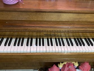 Piano for Sale in Tampa,  FL