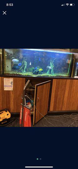 Big Fish Tank for Sale in San Jose,  CA
