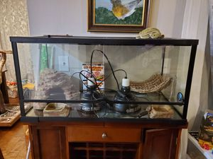 Lizard cage/ terrarium 40 gal. Everything you need! for Sale in Portland, OR