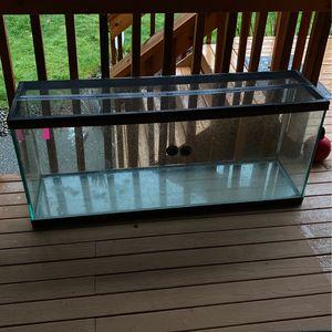 40 gallon Aquarium for Sale in Bonney Lake, WA