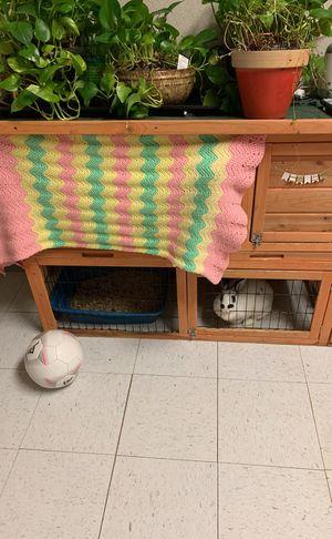 Used bunny cage for Sale in Sulphur, LA