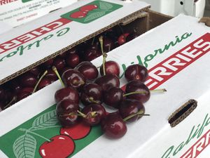 Sweet cherries for sale for Sale in Modesto, CA
