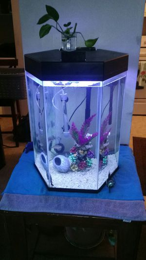 Top Fin 20 gallon for Sale in Sandy, UT