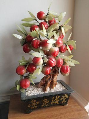 Oriental chinese peach tree for Sale in Chesapeake, VA