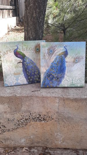 Peacock pictures for Sale in Payson, AZ