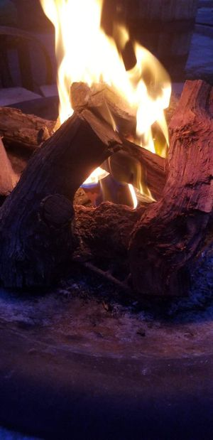 Dry firewood for Sale in Phoenix, AZ