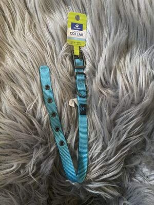 Blue Top Paw Buckle Dog Collar for Sale in Los Angeles, CA