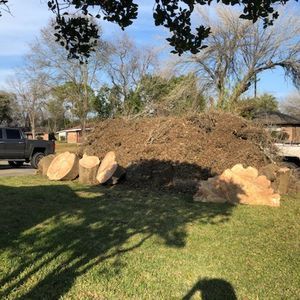 Free Firewood Tree Service Tree Bark Landscaping for Sale in Houston, TX