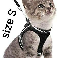 Rabbitgoo Cat Walking Harness and Leash Set, Escape Proof, Soft Adjustable Cat Vest, with Reflective Cat Strip, Comfortable Outdoor Vest for Sale in Los Angeles, CA