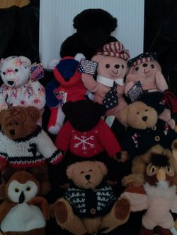 Stuffed Animals - Bundle of 11 for Sale in Dunedin,  FL