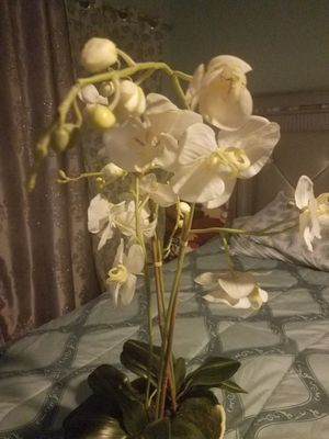 Beautiful orchid plants (fake) for Sale in Houston, TX