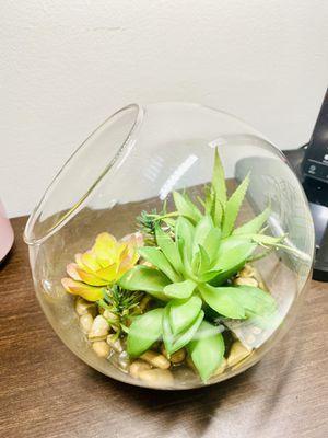 Faux Succulents in Slant Cut Bowl Glass Terrarium (5.5x5.5) for Sale in Jersey City, NJ
